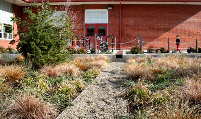 Mount Tabor Middle School Rain Garden
